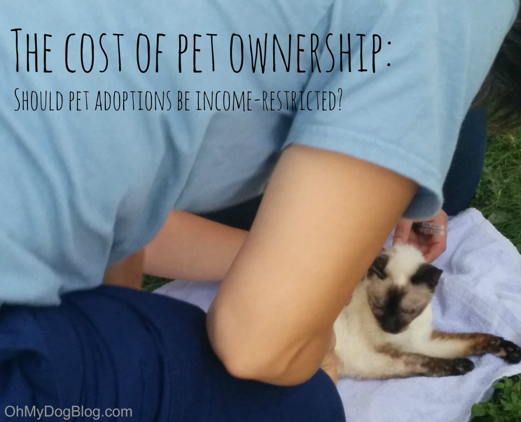The cost of pet ownership