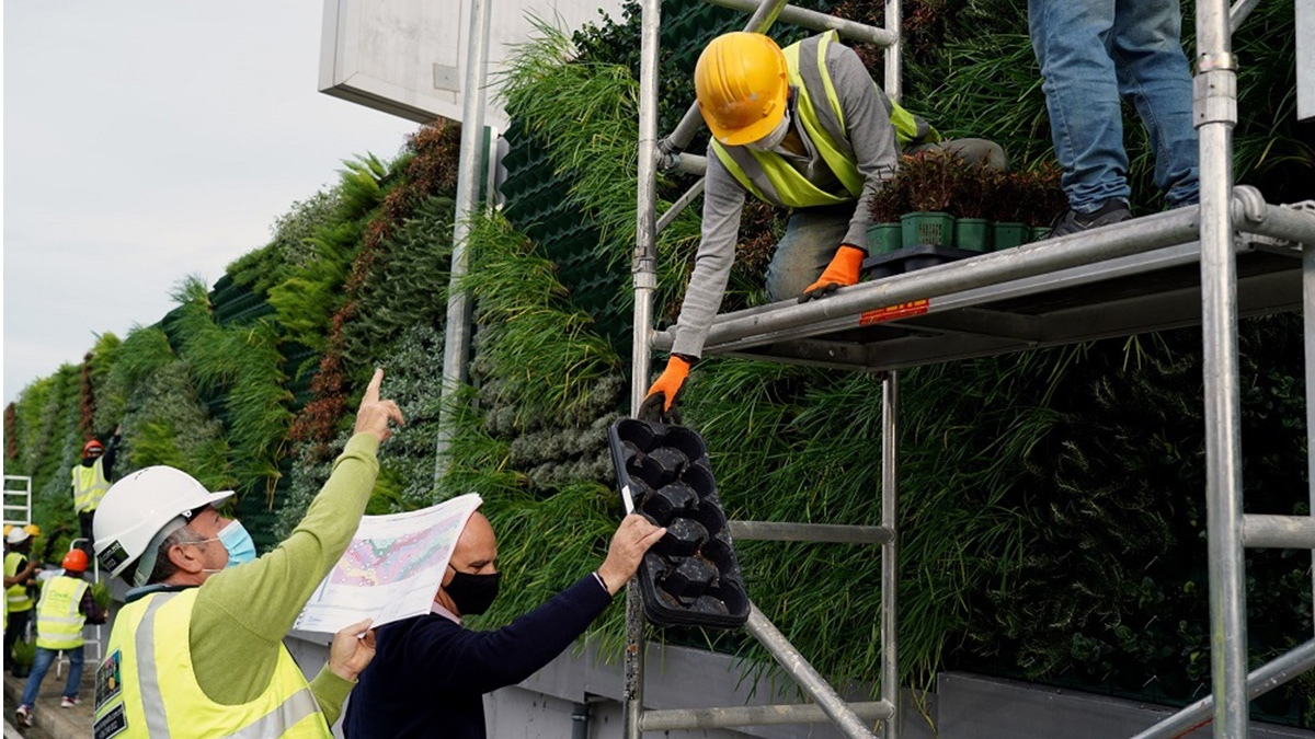 Read more about the article Vertical garden of 27,600 plants give splash of green