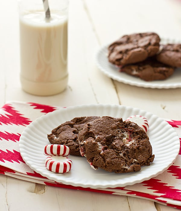 Chewy Chocolate Candy Cane Cookies