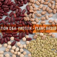 Nutrition Q&A: Protein + Plant-Based Diets