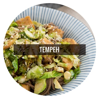 Vegetarian Tempeh Recipes