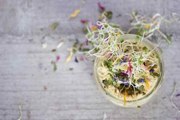 Sprouted Saffron-Basil Hummus