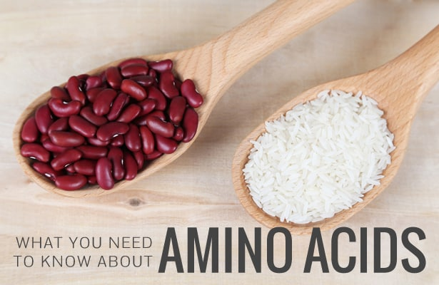 What You Need To Know About Amino Acids