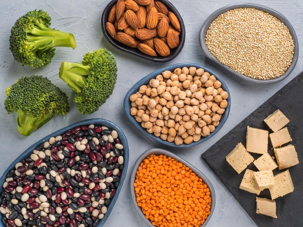 proteinbrist vegetarian