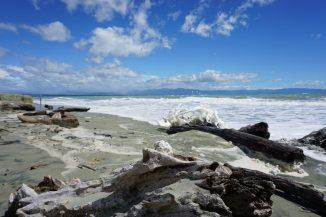 Noch einmal Tahunanui Beach - da lohnt sich auch ein zweiter Besuch