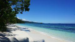 Hello Paradise!