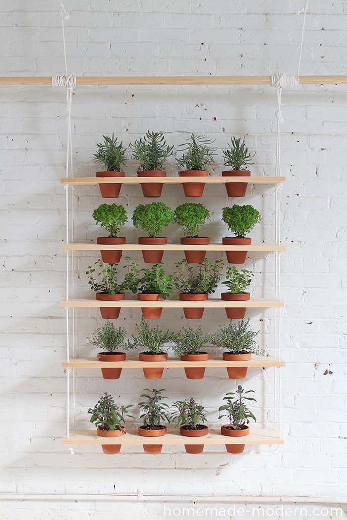 wall hanging indoor planter