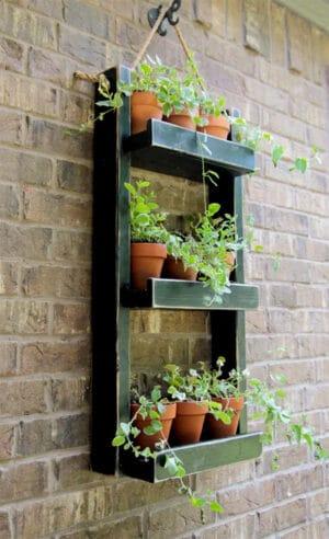 diy shelf herbs garden