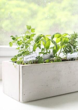 diy indoor herb planter box