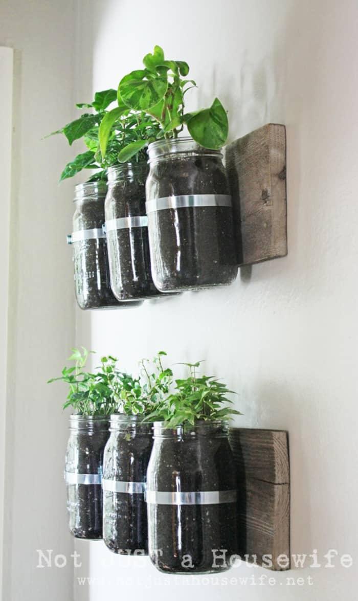 wall hanging herbs garden in mason jars