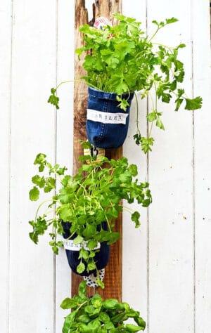 diy denim planters