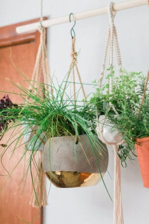 DIY easy wall hanging planters