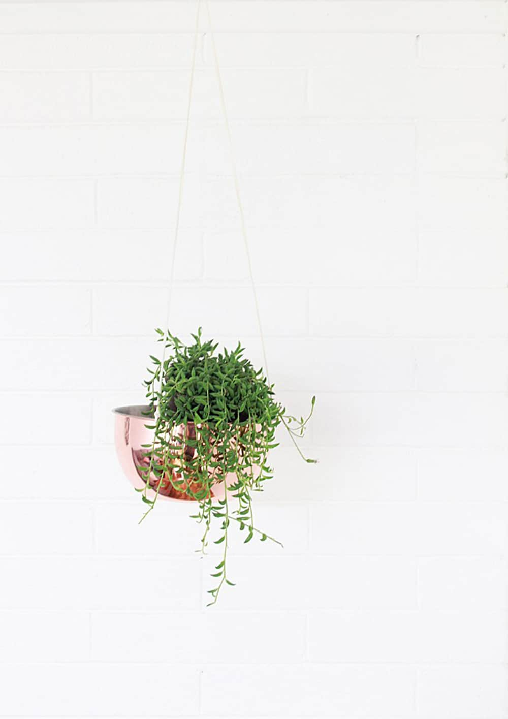diy copper plant hanger