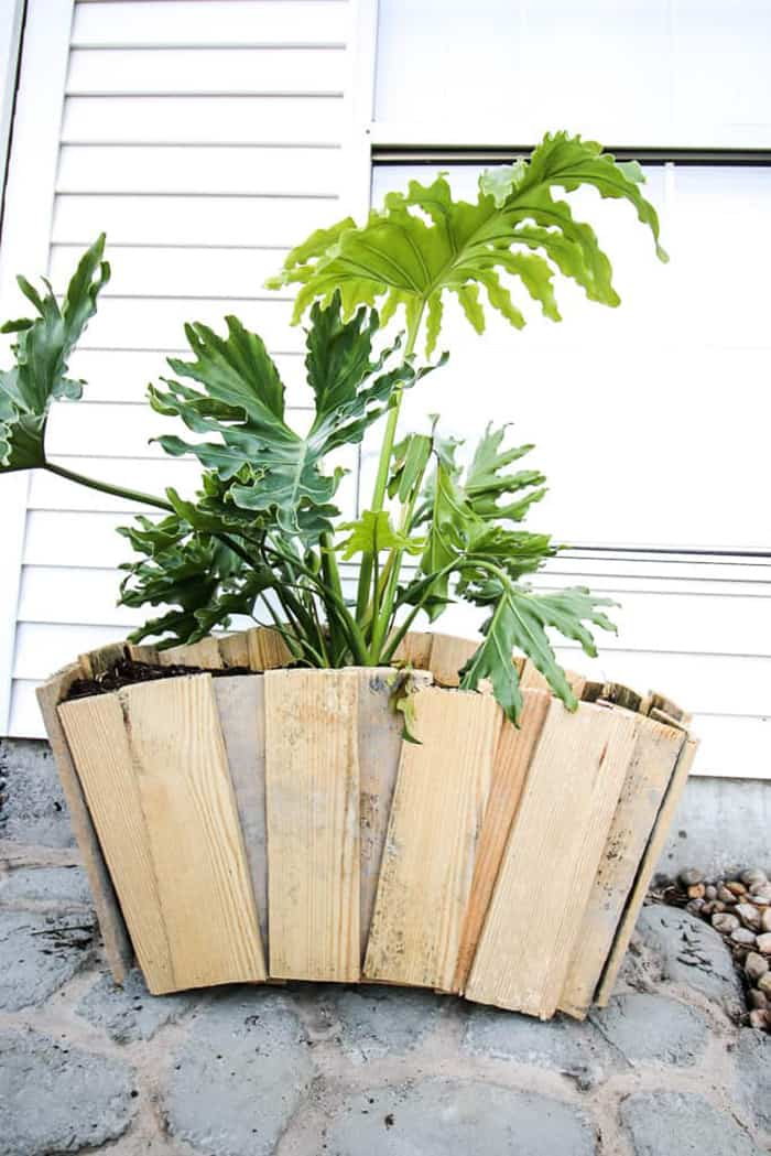 diy palette planter