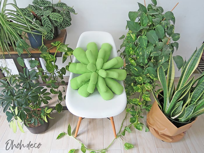 how to sew a succulent pillow