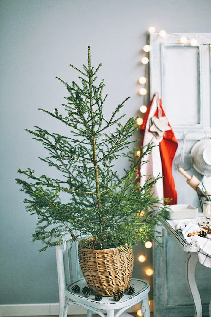 How to decorate a Scandinavian Christmas tree?