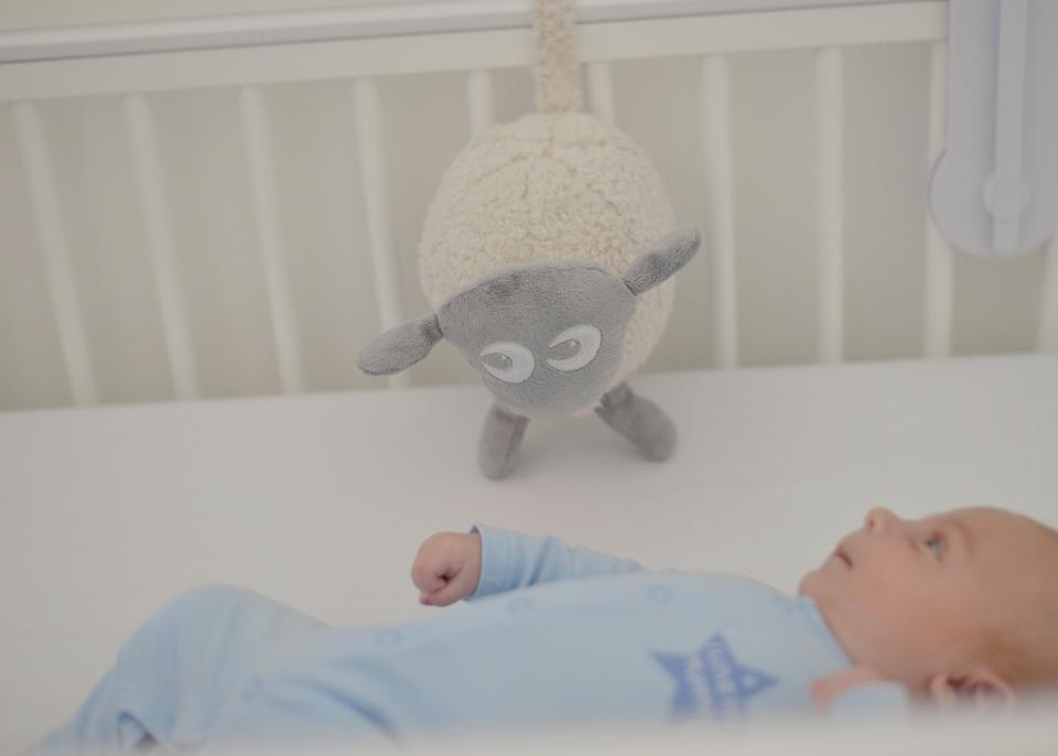 ewen the dream sheep review 1