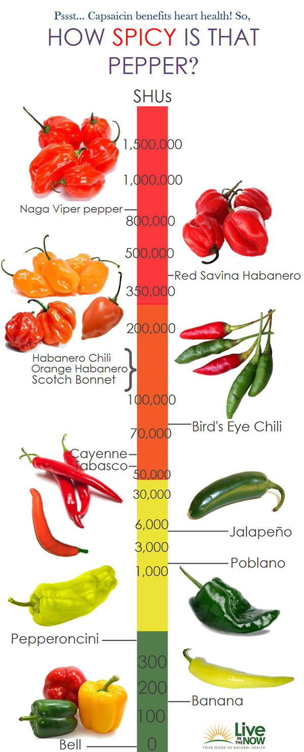 Spicy Pepper Infographic