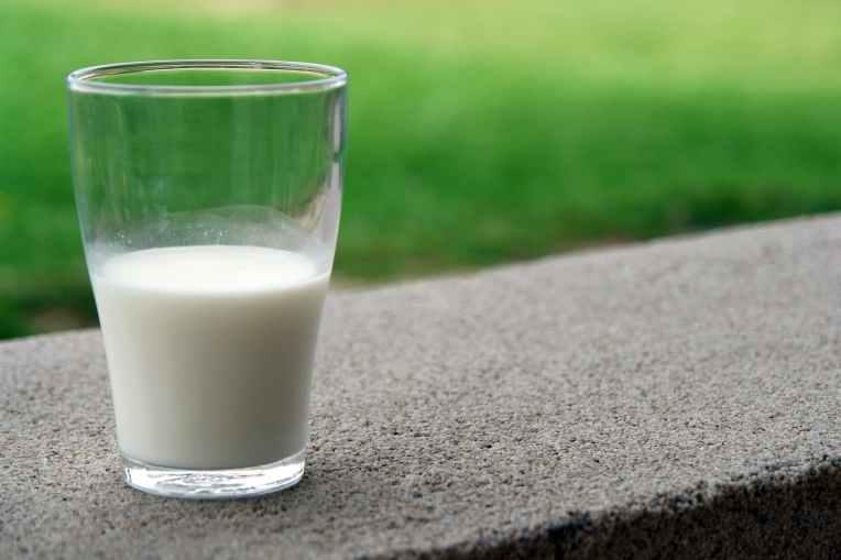 blur calcium close up dairy