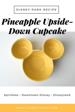disney park recipe-11