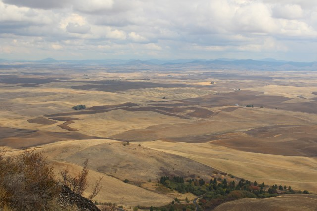 View from Steptoe Butte, Washington