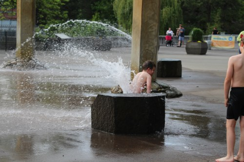 Taking the plunge -- Rotary Fountain