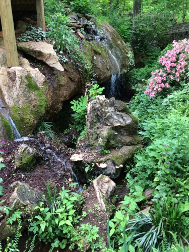 Boulders add to the rugged look of Suzie Hall's garden