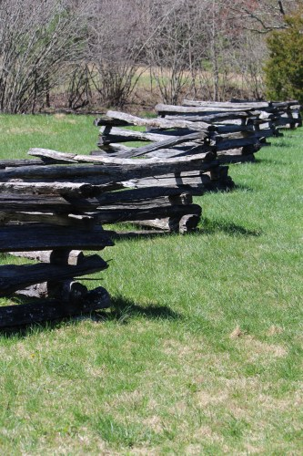 Split rail fence, Cades Cove, TN