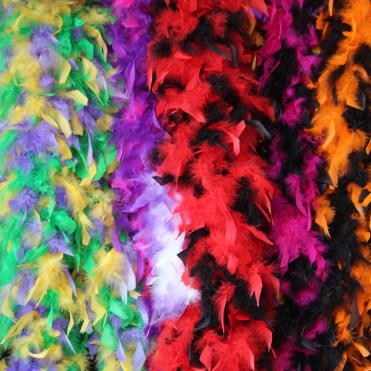 Colorful boas just waiting for a parade!