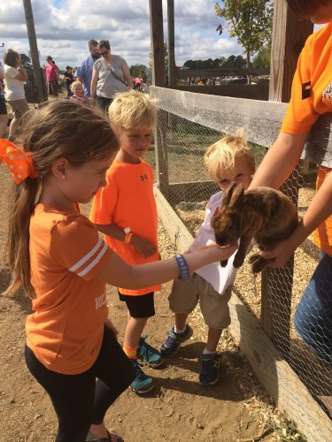 City girl pets rabbit at Oakes Farm!