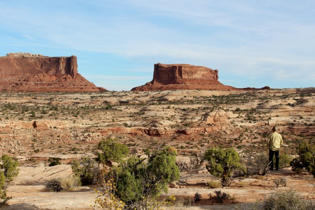 Rugged land, some vegetation lead your eyes to the main attraction: the buttes of Canyonlands.