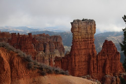 Looking up close yet beyond -- a magnificent view at Bryce.
