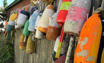 Buoys along the fence at Wiscasset Cottage Antiques.