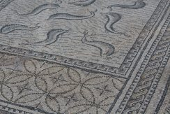 Fish and a patterned border form the design of a floor at Volubilis.