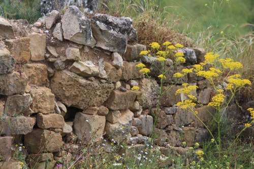 Remnants of a home in Volubilis, Morocco