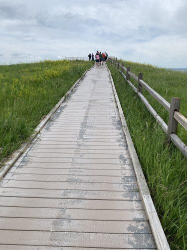 The Badlands -- boardwalk