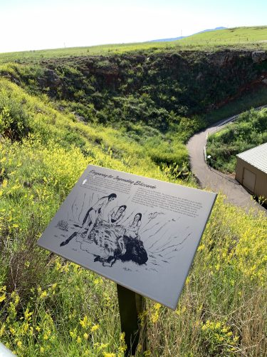 Vore Buffalo Jump information