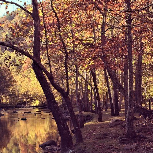 Fall scene at Pipestem State Park, W Virginia