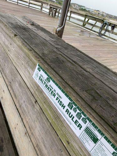 Fish ruler, Pawleys Pier, SC