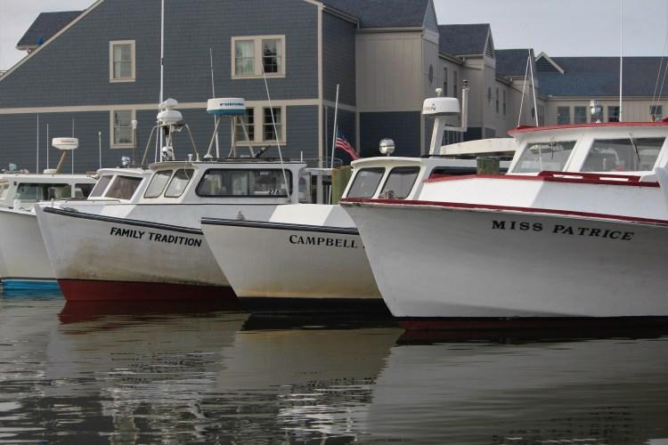 Three boats, St. Michaels MD