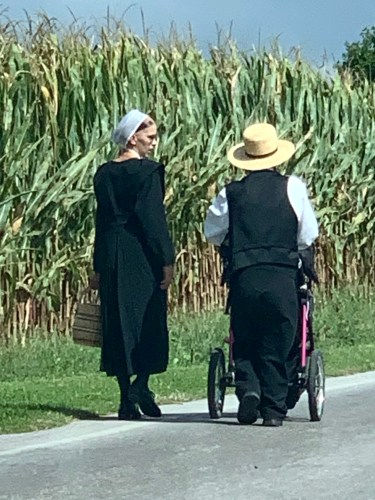 Amish people walking home