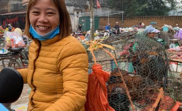 Vietnam: bringing chickens to market