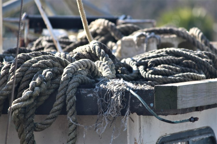 Apalachicola, FL -- gray rope in a heap