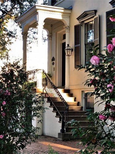 Savannah, GA: Camellias, pretty houses on Jones Street