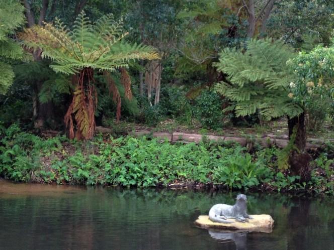 Lake view of Kirstenbosch Botanical Gardens, Cape Town, S. Africa