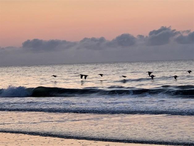 Just before dawn, Pawleys Island SC