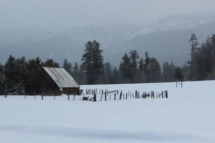 Barn in winter, 2014