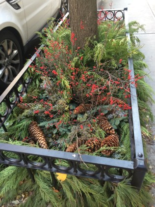 Greenery and berries decorate a sidewalk in NYC.