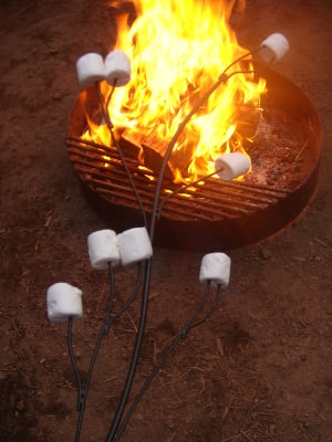 10 Marshmallow Roasting Stick