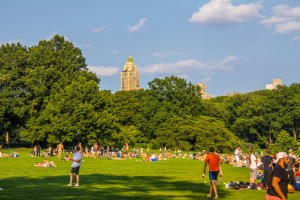 Sheep Meadow with People